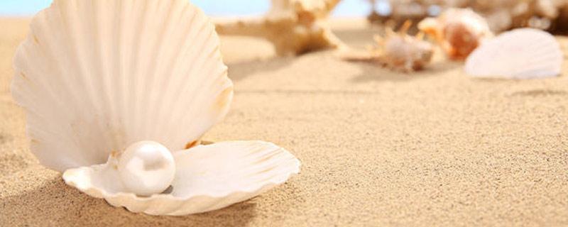 珍珠粉祛痘面膜怎么做